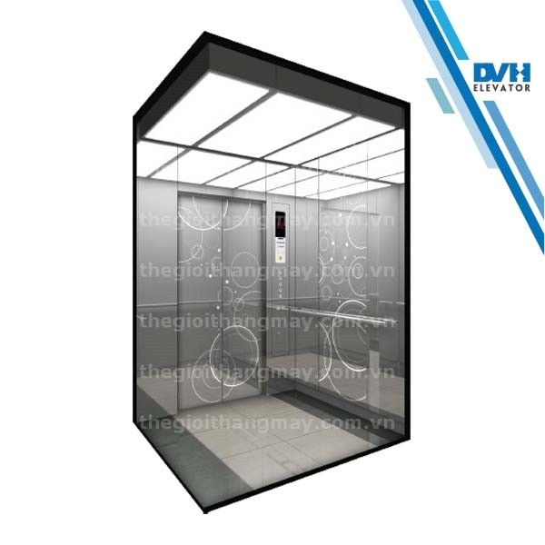 Thang máy gia đình-DVH-101