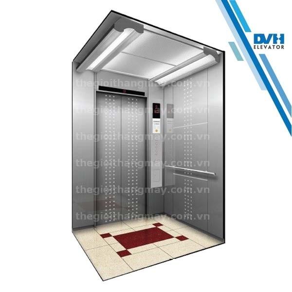 Thang máy gia đình-DVH-102