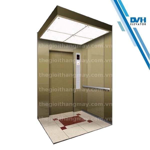 Thang máy gia đình-DVH-108
