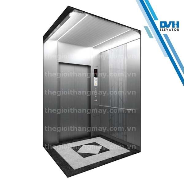 Thang máy gia đình-DVH-110