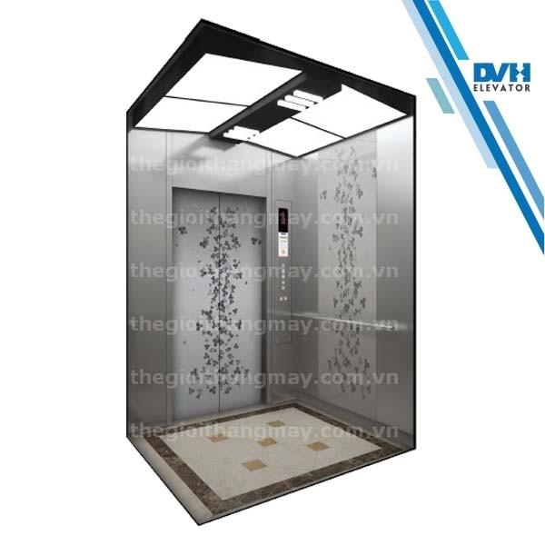 Thang máy gia đình-DVH-112
