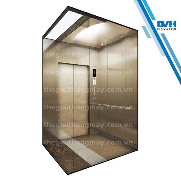 Thang máy gia đình-DVH-114